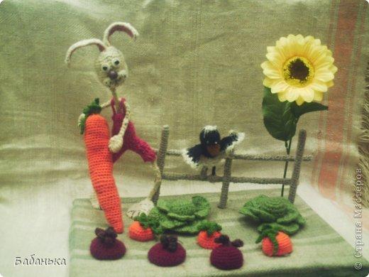 Хорошая морковка уродилась. фото 1