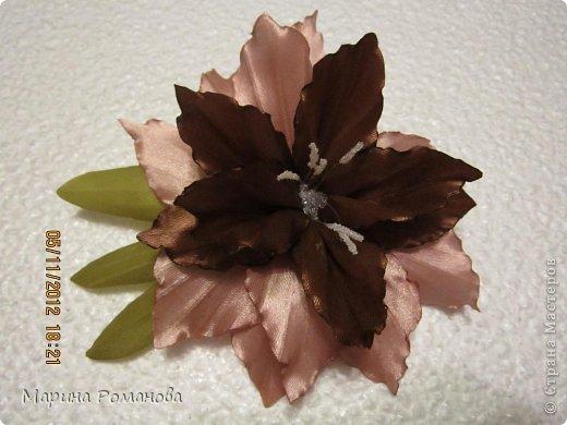 Лилия в бежево-шоколадных тонах фото 1