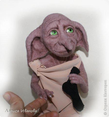Хозяин снова подарил Добби носок! :-)))