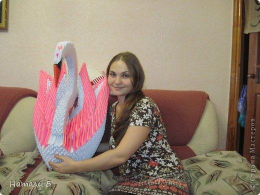 Мой Первый Большой Лебедь
