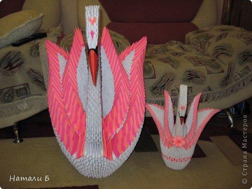 Лебедь Бумага фото 4
