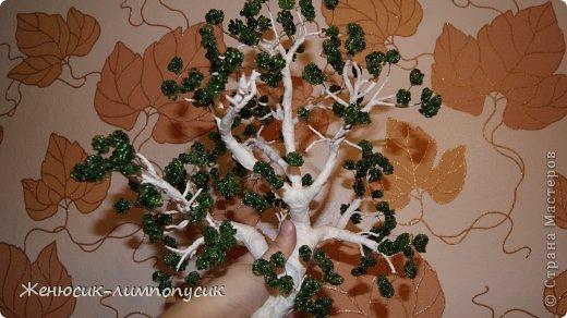 Обматываем ствол дерева малярным скотчем.  Вот как- то так получилось.