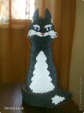 Черная Кошка Бумага фото 1