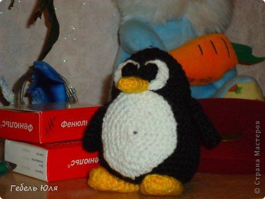 Вязание крючком - Пингвин-2.