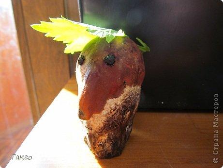 синьор - помидор фото 3
