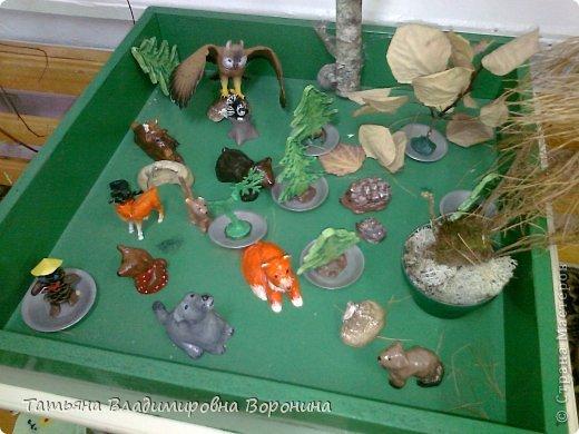 Макеты для уголка природы в детском саду своими руками 42