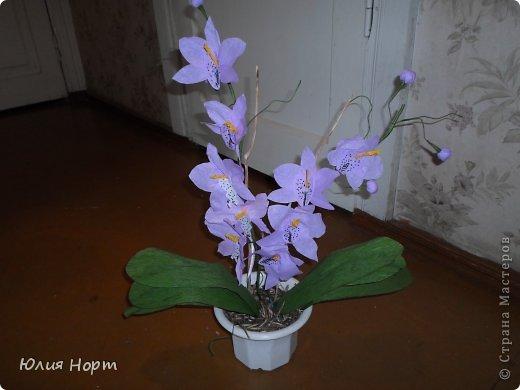 Поделки из цветков орхидеи