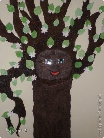 Таке дерево зустрічає діток у дитячому садочку. На даній фотографії у нас весна- період цвітіння дерев. При зміні пори року змінюється і вбрання дерева. фото 2