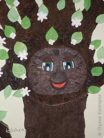 Таке дерево зустрічає діток у дитячому садочку. На даній фотографії у нас весна- період цвітіння дерев. При зміні пори року змінюється і вбрання дерева. фото 3