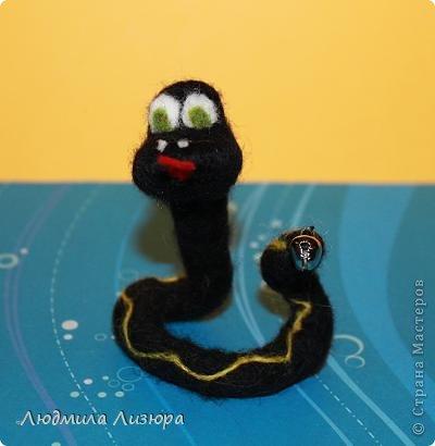 2013 год - год черной водяной Змеи.  фото 2