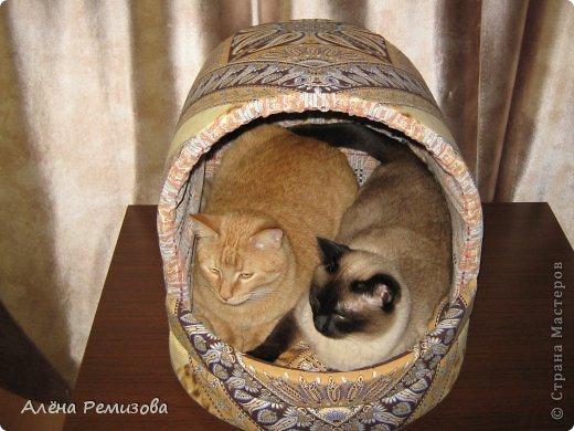Шитьё Лежак для кошек