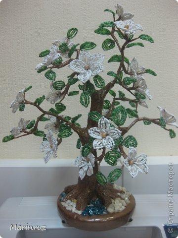 Бисероплетение - Деревья -73 из бисера.