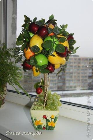 Дерево из фруктов своими руками фото