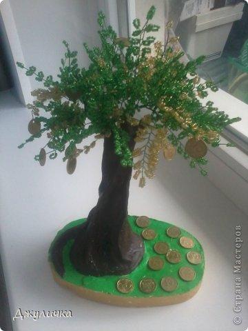 Денежное дерево, Вековой дуб фото 2