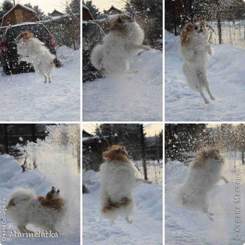 Зимние забавы Чипа фото 3