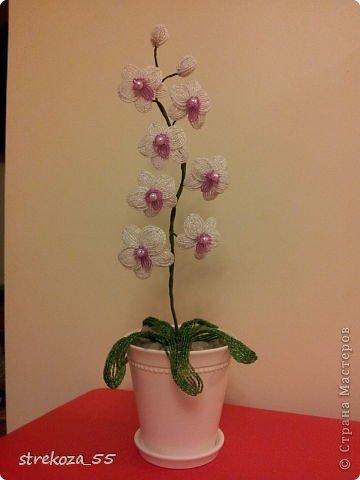 """орхидея из бисера-3.  """" Мир Бисера.com - бисероплетение, бисер схемы, мастер классы."""