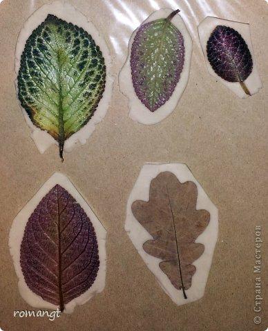 Так выглядят готовые отпечатки листьев на панно. фото 9