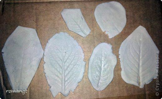 Так выглядят готовые отпечатки листьев на панно. фото 10