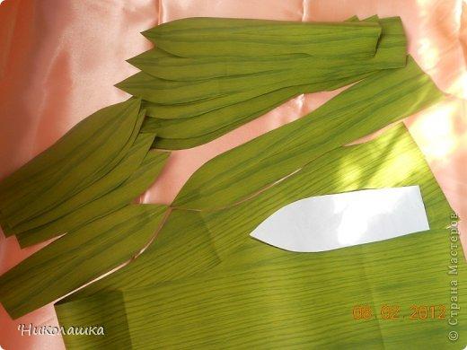 Как сделать лист ананаса 873