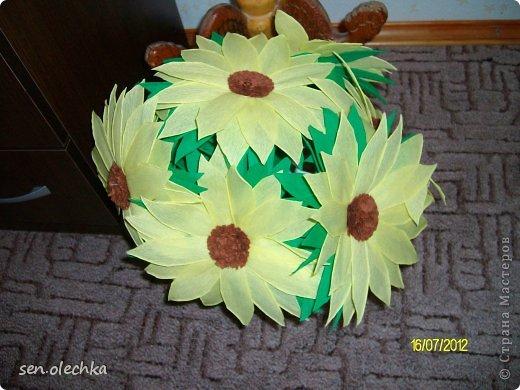 Цветы из гофрированной бумаги бумага