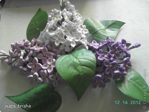 Первая работа http://stranamasterov.ru/node/380889 фото 4