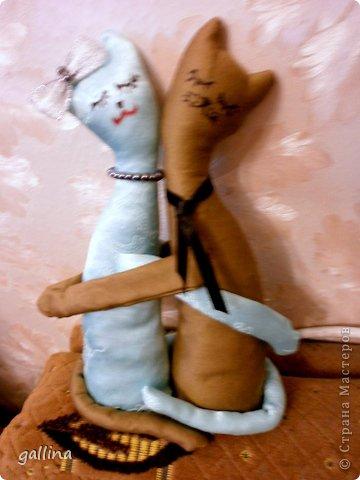 Джинсовый кот. Пошит на ДР куму, большому любителю котов. фото 3
