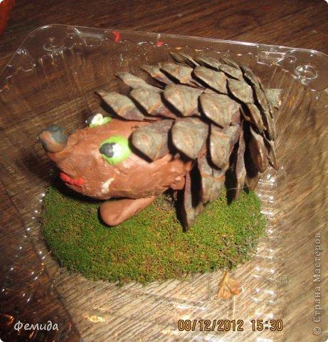 Лесные жители под импровизированным дубом фото 3