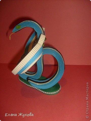Символ года-змея фото 4