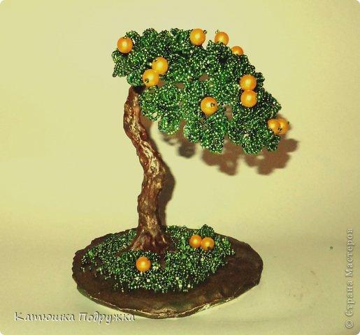 Сотворилось вот такое апельсиновое деревце в подарок пожилому человеку на юбилей. На Востоке оно символизирует здоровье и долголетие. Дерево, хоть и пожившее немалые годы, по-прежнему приносит яркие и сочные плоды. фото 1