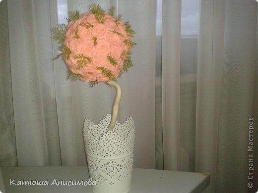 Розовые деревья. фото 3