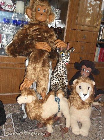 Мои мягкие игрушки. Эта обезьянка эксклюзивная.  Висяче-бнимачая, очень теплая и мягкая. На проволочном каркасе. Высота игрушки 120 см. фото 5