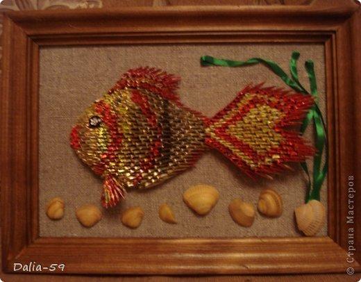 Золотые рыбки фото 6