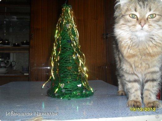 наша кошечка Лиза,тоже хочет Новый Год фото 1