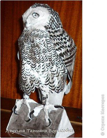 Совушка-сова умная голова.  фото 3