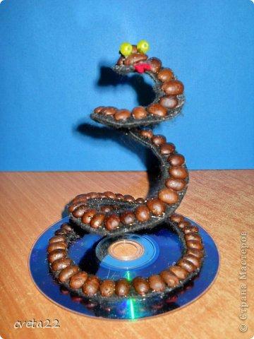 Вот такую змеюшку сделала из кофе, ниток и железной крышки. Укрепила на компьютерном диске,   украсила надписью, слегка украсила гелем с блестками  - чем не новогодний сувенир?! фото 2