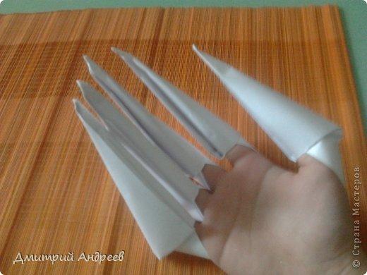 Это когти, которые мы сегодня будем делать. фото 1