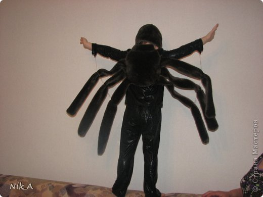 как сделать костюм паука своими руками для собаки