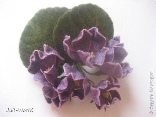 Фиалки, орхидея фото 4