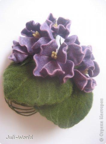 Фиалки, орхидея фото 3