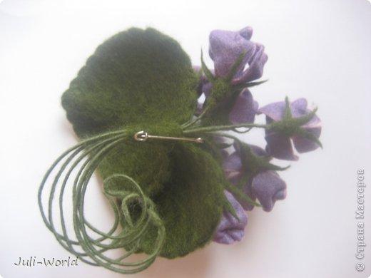 Фиалки, орхидея фото 6