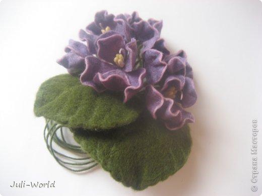 Фиалки, орхидея фото 5