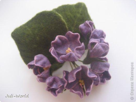 Фиалки, орхидея фото 2