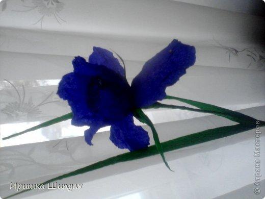 На каждом цветке,на одном лепестке прикреплены маленькие стразики) фото 4