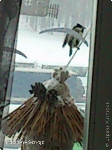"""Добрый всем день!!! Наконец настал этот момент, когда я могу выложить фото своей готовой кормушки для птиц! Иногда бывает начинаешь какую-нибудь поделку, и вдруг не понимаешь что и как с ней делать(творческий кризис)))) и оставляешь до лучших времён. Так вот я эту замечательную идею подсмотрела у Kukushechki ГОД НАЗАД(!), начала делать и застопорилась... А пару дней назад у меня как """"третий глаз"""" открылся))))))   Я ТаК РаДа!!! И ХоЧу ПоДеЛиТьСя С ВаМи!!! фото 6"""