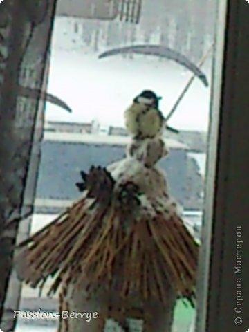 """Добрый всем день!!! Наконец настал этот момент, когда я могу выложить фото своей готовой кормушки для птиц! Иногда бывает начинаешь какую-нибудь поделку, и вдруг не понимаешь что и как с ней делать(творческий кризис)))) и оставляешь до лучших времён. Так вот я эту замечательную идею подсмотрела у Kukushechki ГОД НАЗАД(!), начала делать и застопорилась... А пару дней назад у меня как """"третий глаз"""" открылся))))))   Я ТаК РаДа!!! И ХоЧу ПоДеЛиТьСя С ВаМи!!! фото 7"""