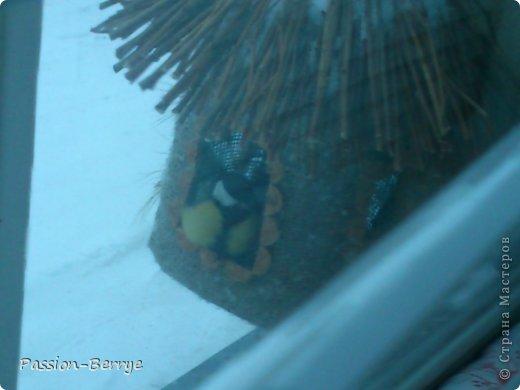 """Добрый всем день!!! Наконец настал этот момент, когда я могу выложить фото своей готовой кормушки для птиц! Иногда бывает начинаешь какую-нибудь поделку, и вдруг не понимаешь что и как с ней делать(творческий кризис)))) и оставляешь до лучших времён. Так вот я эту замечательную идею подсмотрела у Kukushechki ГОД НАЗАД(!), начала делать и застопорилась... А пару дней назад у меня как """"третий глаз"""" открылся))))))   Я ТаК РаДа!!! И ХоЧу ПоДеЛиТьСя С ВаМи!!! фото 8"""