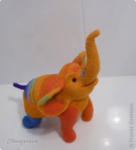 Радужный слонёнок. фото 3