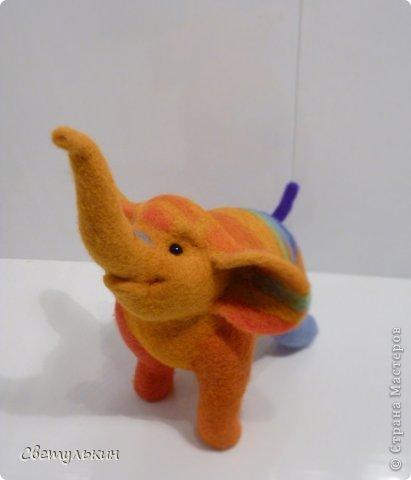 Радужный слонёнок. фото 1