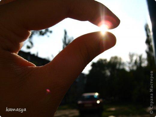 Представляю вам мое хобби) Обожаю фотографировать..  В особенности макро. Мои последние фотографии..вышла на прогулки и тут началось.... Конфетти...остатки после свадьбы :) фото 9