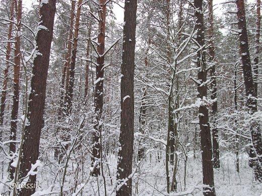 Проснуться зимним утром,попить чайку в такой тёплой чашке,надеть приятные и тёплые наушнички,открыть ноутбук,включить музыку,просмотреть новости.А за окном снег и мороз.К-р-а-с-о-т-а! фото 4